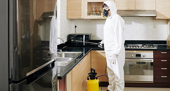 Sanitising Process